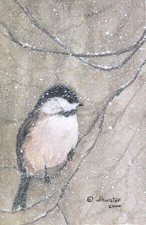 2000 - Cheery Chickadee - Black-Capped Chickadee   SOLD
