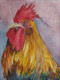 A rooster for Chris    Dorothy dhunter Adams   Copy