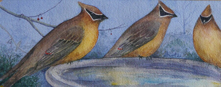 CEDAR WAXWING CARD 2014 15    Dorothy dhunter Adams