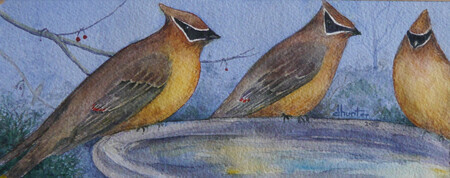2015 Cedar Waxwings - Dorothy dhunter Adams