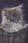 Small Kitten in a Basket   Dorothy dhunter Adams   SOLD