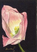 TULIP SERIES   HOPE   Dorothy dhunter Adams  SOLD
