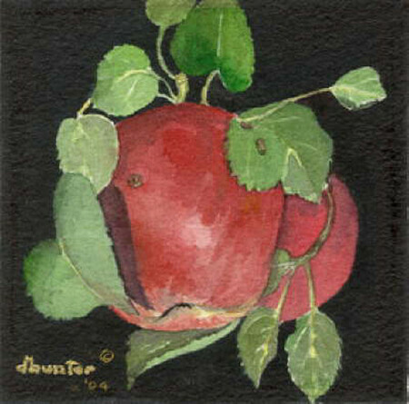 Wild Apples II   Dorothy dhunter Adams   sold