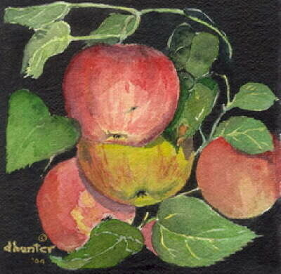 Wild Apples III   Dorothy dhunter Adams  sold