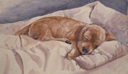 Winnie Sleeping   Dorothy dhunter Adams SOLD